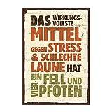 TypeStoff Holzschild mit Spruch – Fell und Vier Pfoten – im Vintage-Look mit Zitat als Geschenk und Dekoration