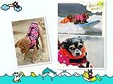 Hund Schwimmweste LIFE JACKET Schwimmen Vest Kleidung Oxford Ripstop Quick Release - 2