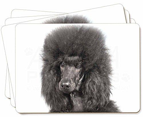 Advanta - Place Mats Schwarzer Pudel Hund Bild Tischsets in Geschenkbox Weihnachten Tisch Geschenk -
