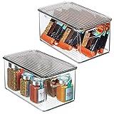 mDesign Juego de 2 cajas organizadoras con asas - Organizador de frigorífico con tapa para almacenar alimentos - Contenedor de plástico sin BPA para mueble de cocina o nevera - transparente/gris