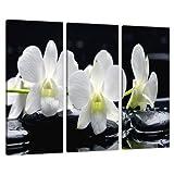 Set of 3Panel schwarz weiß Floral Leinwand Art Wand Blumen Bild 3051
