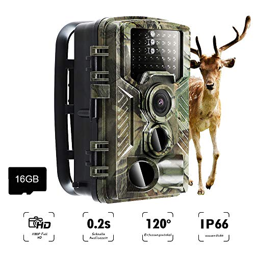 AMTSEE Wildlife Camera 16MP 1080P Infrared 20m Night Vision Hunting Camera with 2.0'' LCD Display,IP66 Waterproof Portable Outdoor Surveillance Camera for Hunting, Home Security and Animal Monitoring Super High Resolution Kamera