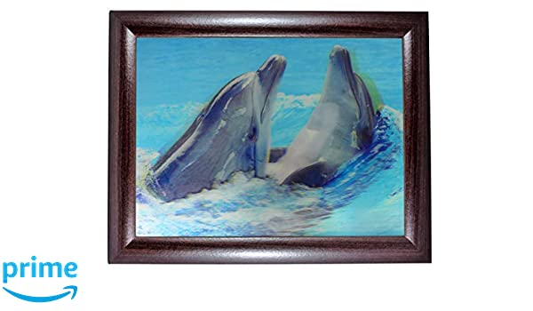 Ofa Products Dolphins Swimming Together Framed 3 Dimensional Colour