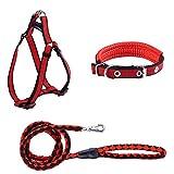 Halsband Leine Geschirr Set verstellbar nicht Pull Ultra lange 160cm Heavy Duty Training Set 3Pack Hohe Sichtbarkeit kein würgen für kleine medium Großer Hund Puppy