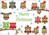 10 lustige Weihnachtskarten mit Eulen / 10-er Set Weihnachtspostkarten im Format DIN A 6 (14,8 x 10,5 cm) von EDITION COLIBRI (10649)