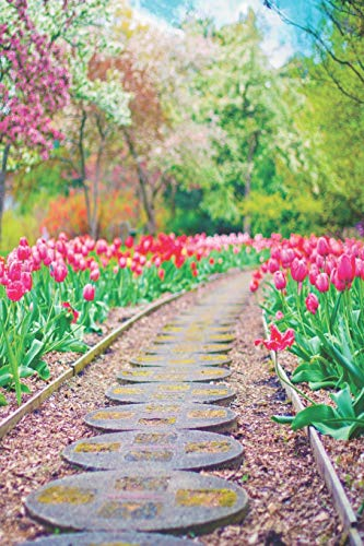 Notes: Lined Notebook | 120 Pages (6 x 9 inches) | Ruled Writing Journal With Springtime Pink And Red Tulips Lining A Walkway In A Lush Garden Filled With Blooming Trees Cover