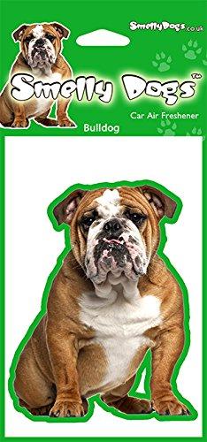 British Bulldog–2x Delightful KFZ-Lufterfrischer (Weihnachts-strumpf Bulldog)