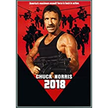 Calendrier mural 2018 [12 pages 20x30cm] Chuck Norris Action Kung Fu # Vintage Trash film affiches Reprint [Calendar]