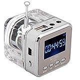 Big-Mountain Mini Lautsprecher mit Radio FM LCD Display | Soundstation USB Micro SD Karte Musik MP3 Player (Silber)