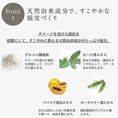john masters organics zinc and sage shampoo with conditioner, 1er Pack (1 x 473 ml)