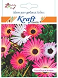 Mesembrynthemum/Ice Flower Seeds (Pack o...