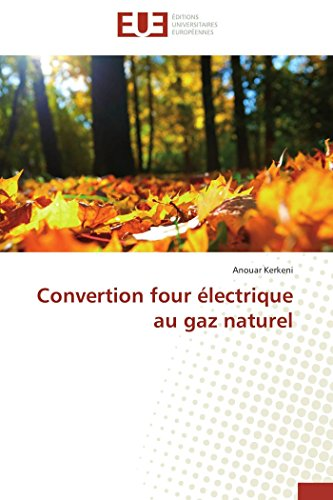 Convertion four électrique au gaz naturel