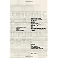Economic, Social, and Cultural Rights in International Law: Contemporary Issues