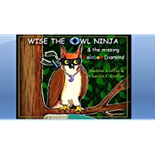 Wise The Owl Ninja And The Missing Rainbow Diamond (English Edition)