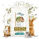 Ida Plus - Kräuter-Blüten-Mix 3,5 Kg - abwechslungsreicher Futtermix für Nager - ohne Getreidekörner - mit Vitamin C - optimal für Kaninchen, Meerschweinchen, Hamster, Chinchilla & mehr - mit Luzerne