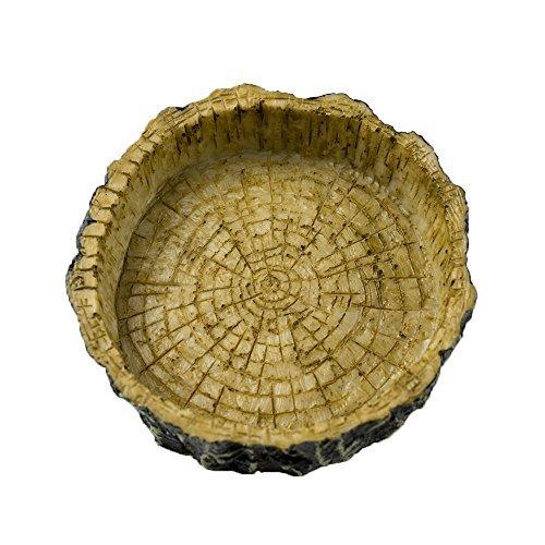 Omem - Ciotola per cibo e acqua per rettili, aspetto naturale, realizzata in resina