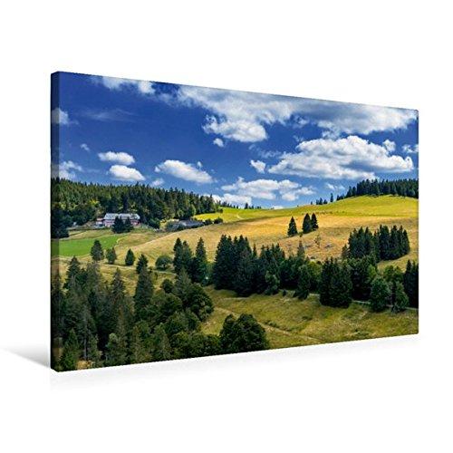 Premium Textil-Leinwand 75 x 50 cm Quer-Format Zwischen Hasenhorn und Gisiboden Alm | Wandbild, HD-Bild auf Keilrahmen, Fertigbild auf hochwertigem ... im Naturpark Südschwarzwald (CALVENDO Natur)