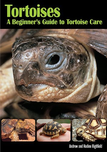 Tortoises by Andrew Highfield (2009-09-01)