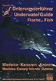 Unterwasserführer, Bd.8, Madeira, Kanaren, Azoren, Fische (Edition Freizeit und Wissen / Unterwasserführer) - Peter Wirtz