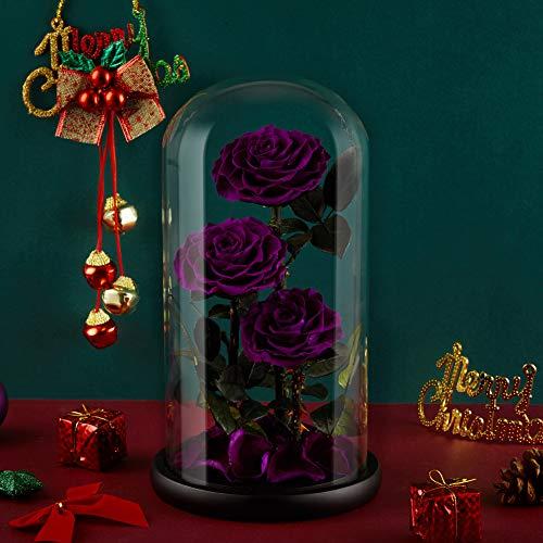 Eterfield Ewige Rose Handgemachte Immerwährende Echte Rosen Konservierte Blume in Glas Valentinstag Geburtstag Muttertag Thanksgiving Weihnacht Hochzeitstag Geschenke (Lila 3 Rose)