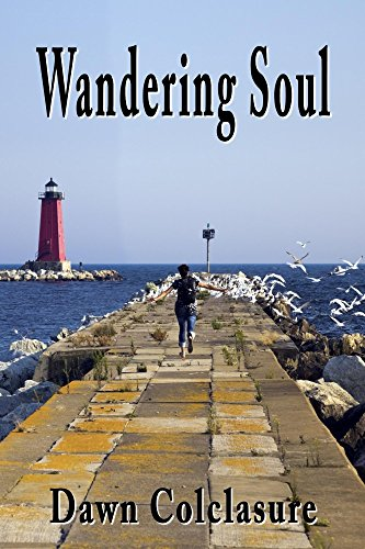 wandering-soul-poems-english-edition
