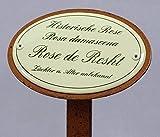 Rosenschild Emaille, Historische Rose, Damaszener-Rose, Rose de Resht