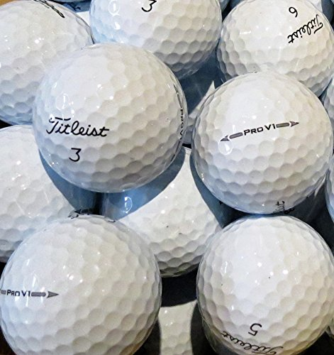 24 Titleist Pro V1 Golf Balls - Pearl / Grade A Lake Balls