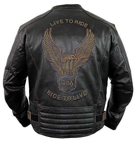 Motorrad Lederjacke mit einer Adler Prägung (M) (Rock Tragen Leder)