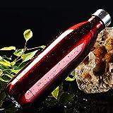 Bottiglia D'acqua, Acciaio Inox 500ml Tazza Termica per Bevande Fredde e Calde Tazza Sport Facile da Trasportare Adatto per Viaggi, Campeggio(Rosso)