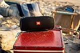 Outdoor-Speaker