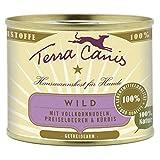 Terra Canis Wild mit Kürbis und Vollkornnudeln | 12x 200g Nassfutter
