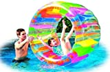 Water Wheel - Giant Inflatable Swimming Pool Water Wheel Toy (49.2 X 33) by Jilong
