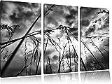 Monocrome, Düsteres Gras vorm Regen 3-Teiler Leinwandbild 120x80 Bild auf Leinwand, XXL riesige Bilder fertig gerahmt mit Keilrahmen, Kunstdruck auf Wandbild mit Rahmen, gänstiger als Gemälde oder Ölbild, kein Poster oder Plakat
