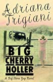 Image de Big Cherry Holler: A Big Stone Gap Novel