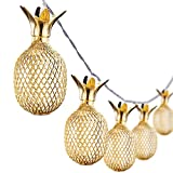 2m 10er Goldene Ananas LED Lichterkette Batteriebetrieben,10 LEDs Warmweiß, Gold Ananas Metallgitter Deko für Wohnzimmer,Schlafzimmer,Weihnachten,Hochzeit