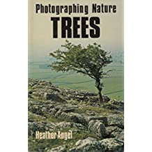 Photographing Nature: Trees