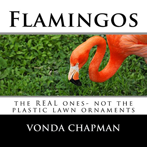Flamingos: the REAL ones- not the plastic lawn ornaments (The Happy Chappy Astonishing Animals) -