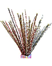 Fab n Style Natural Handmade moti Stick Bunch Hand Craft (Multi Colour)