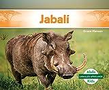 Facóquero (Warthog) (Animales africanos / African Animals)