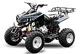 AKP Warrior 250cc 10' Offroad 4-Gang + Rückwärtsgang ATV Quad Bike (Orange)