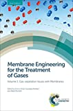 Membrane Engineering for the Treatment of Gases: Volume 1: Gas-separation Issues with Membranes (English Edition)
