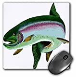 3dRose LLC 8 x 8 x 0.25 inches Mouse Pad, Rainbow Trout (mp_21812_1)