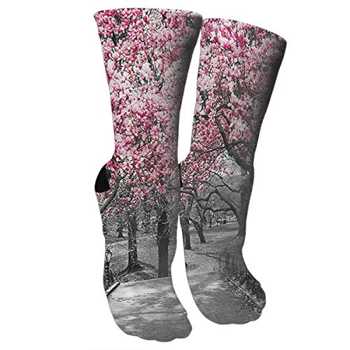 Blossoms in Central Park Cherry Bloom Trees Knee High Graduated Compression Socks for Women and Men - Best Medical, Nursing, Travel & Flight Socks - Running & Fitness