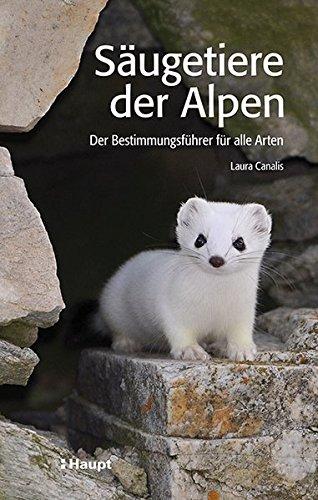 saugetiere-der-alpen-der-bestimmungsfuhrer-fur-alle-arten
