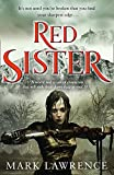 Best Sister  Book - Red Sister (Book of the Ancestor, Book 1) Review