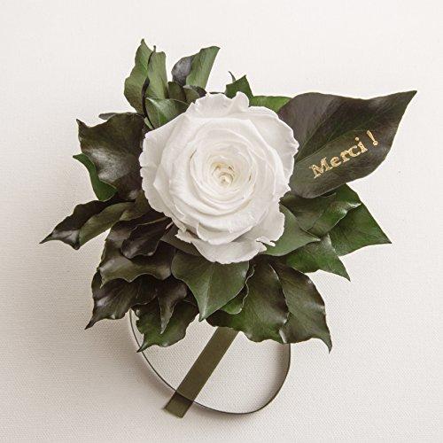 """Ewige Rose konserviert Rosenstrauß mit Goldschrift """"Merci"""" 3 Jahre haltbar Danksagung Gastgeschenk ROSEMARIE SCHULZ® (Weiß)"""