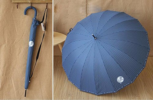 zjm-16-bone-super-fresh-wind-streaks-long-umbrella-automatically-portable-shed-bent-umbrellastripe-b