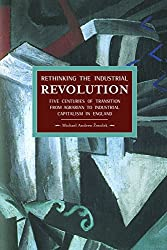 Rethinking the Industrial Revolution: Five Centuries of Transition from Agrarian to Industrial Capitalism in England : Historical Materialism, Volume 49