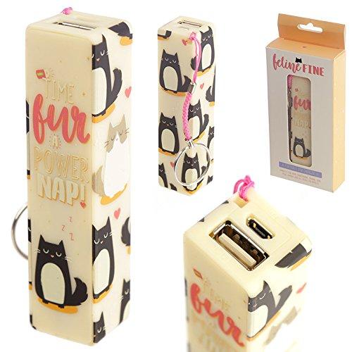 Feline feine Katze Design portable USB Ladeger?t Power Bank Schl?sselanh?nger
