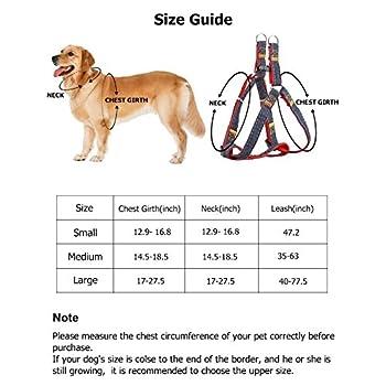 urpower Harnais pour chien et laisse Set & longue durée & Stable réglable poitrine Harnais Denim & Nylon laisse en nylon pour chien pour les petites, moyennes et grandes chien parfait pour Walking Laufen Entraînement